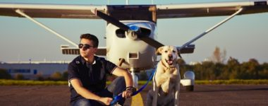 What Is The Cost Of Flying Your 'Fur Baby' On A Private Jet?